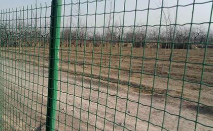 铁丝围栏网